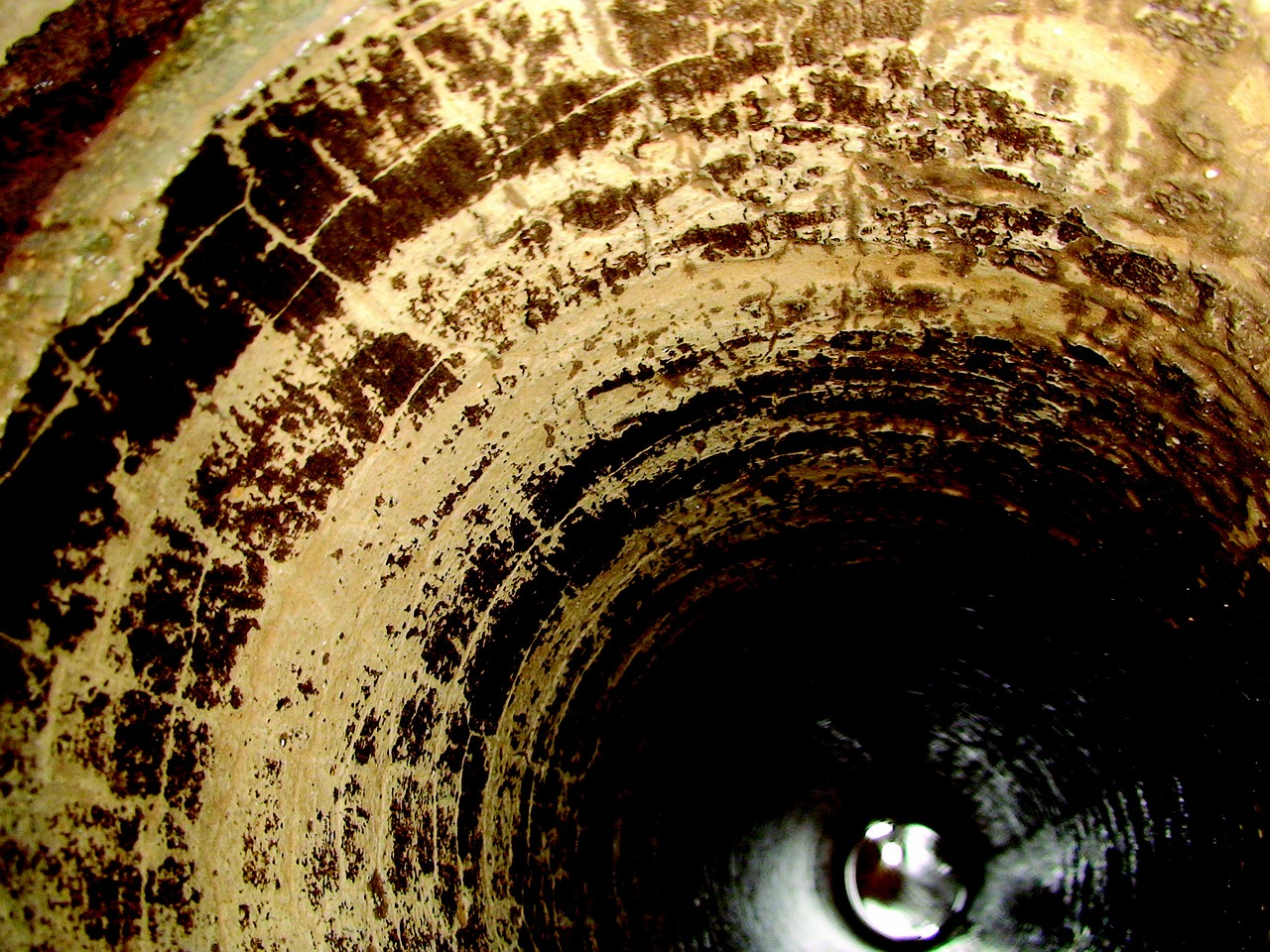 Professional Sewer Camera Inspection